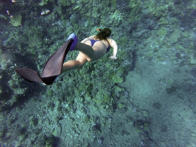 Hacer esnórquel en Riviera Maya